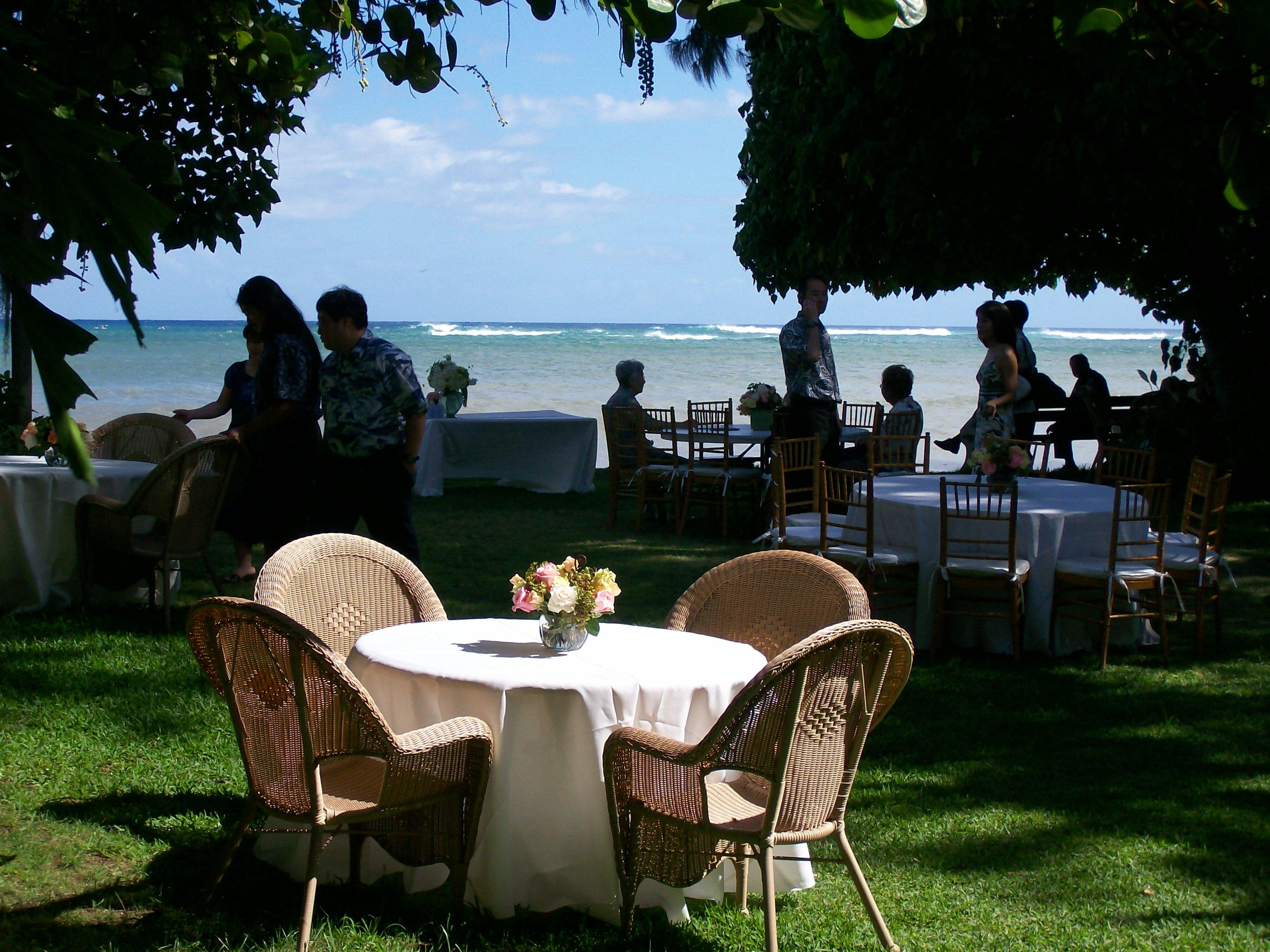 hawaiian odyssey the wedding